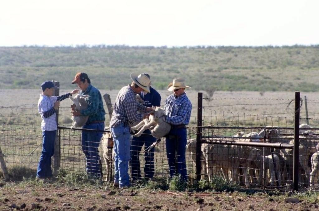 ranch.6